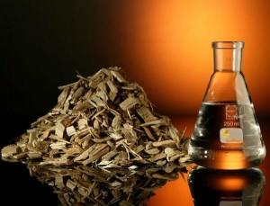 жидкое биотопливо