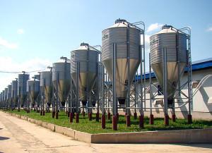 газовые установки с биотопливоом