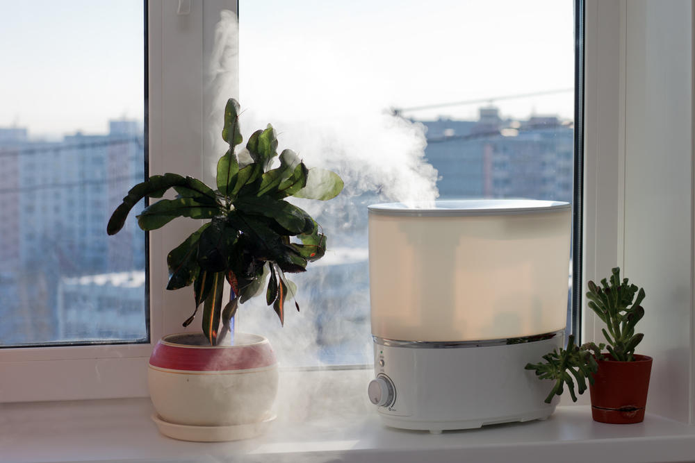 Люди, которые часто проветривают квартиру и поддерживают высокий уровень влажности воздуха, болеют реже