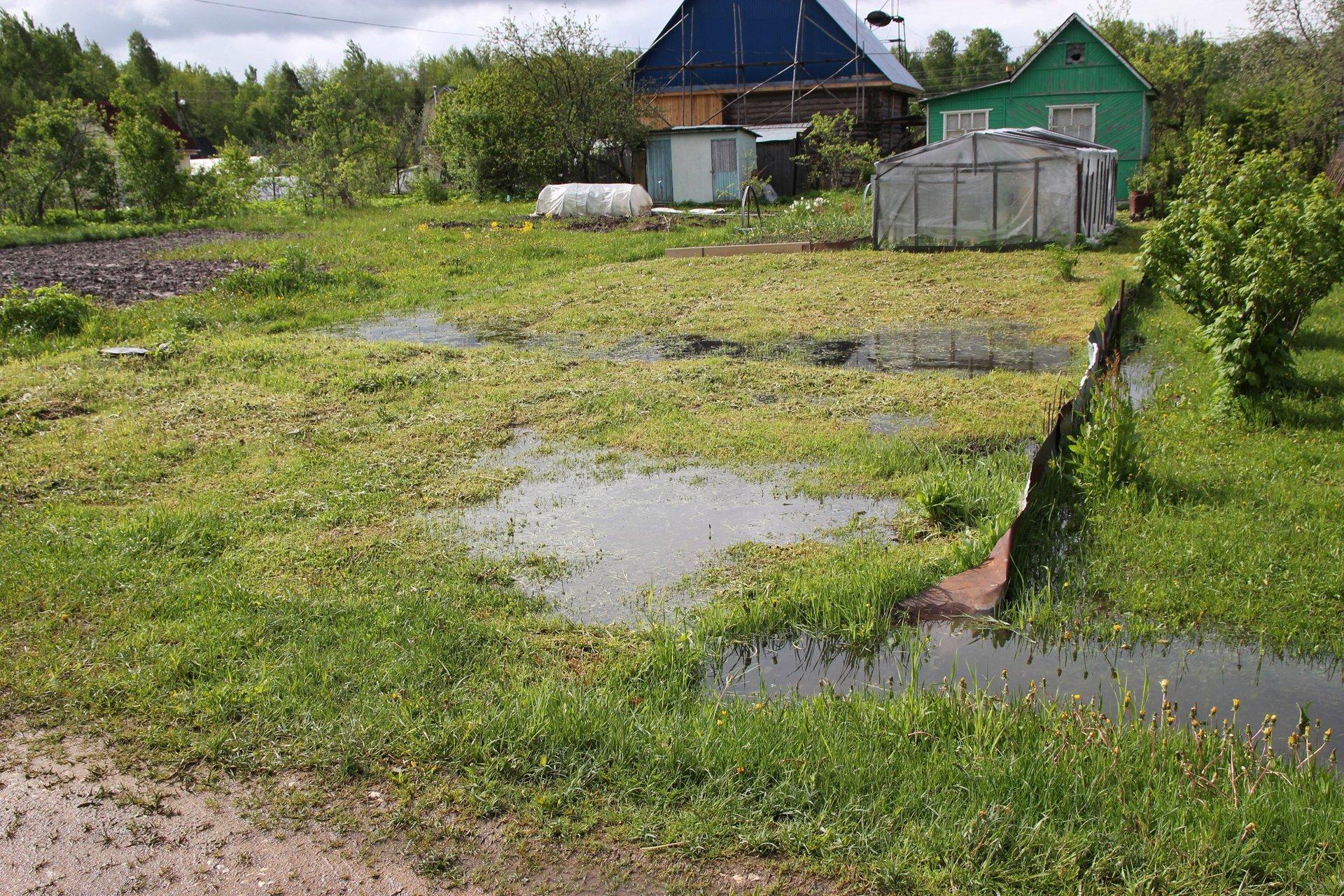 Застой воды на дачном участке