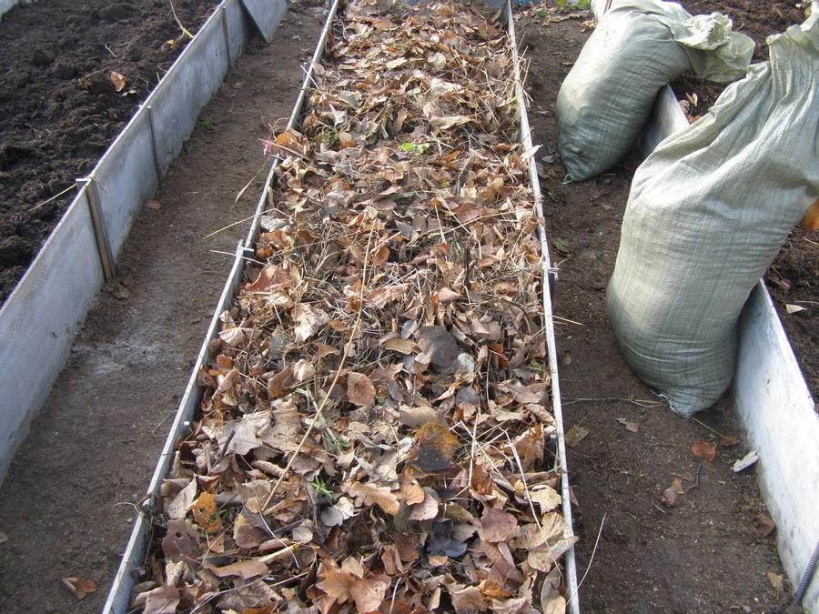 Засыпка листвой