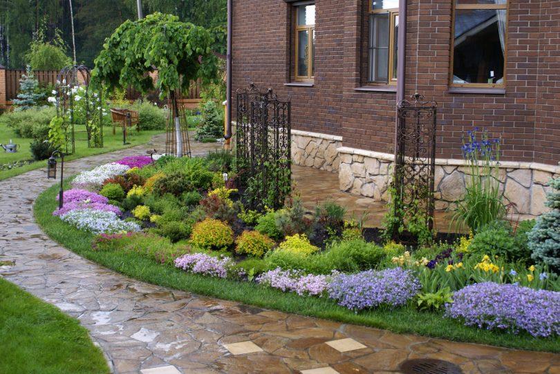 Красивая вытянутая клумба с цветами вдоль стены жилого дома