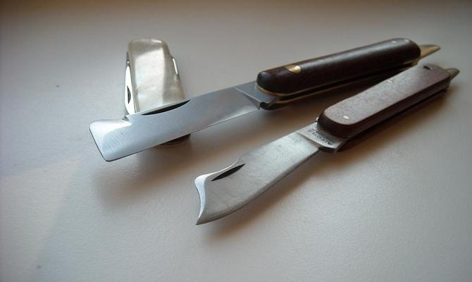 Знакомимся с садовыми ножами поближе – конструктивные особенности фото
