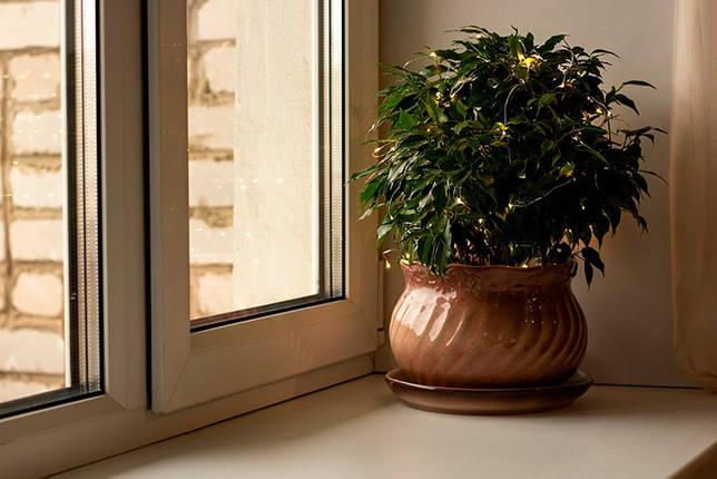 Декорирование комнатного растения электрической гирляндой