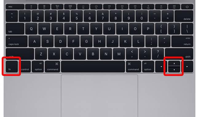 Keyboard_Mac_2.jpg